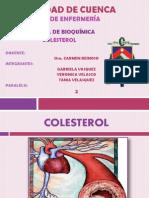 Colesterol Exposicion