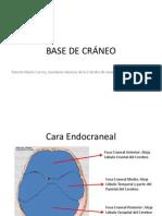 BASE DE CRÁNEO