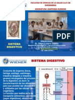 Sistema Digestivo Unw 13-i