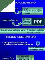 TECIDO CONJUNTIVO- HISTOLOGIA