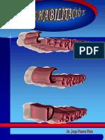 Clase 4 - Enfermedad Cerebro Vascular