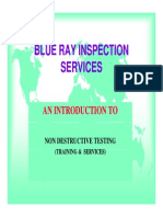 Blue Ray Inspection Services.pdf