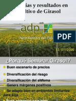 Girasol_ADP