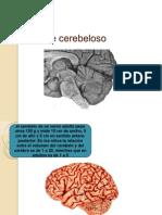 Sx Cerebeloso y Vestibularss