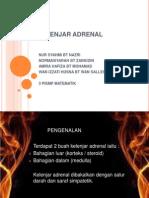 adrenal.pptx