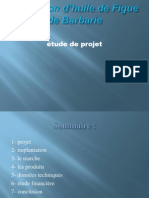 123318422 Presentation Exemple de Projet Figue de Barbarie