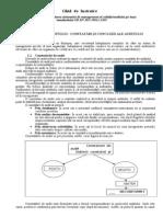 8. Efectuarea auditului 2