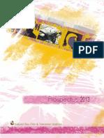 SRFTI prospectus