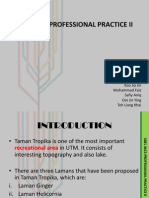 SBEL 3622 PROFESSIONAL PRACTICE II.pptx