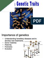 024a Human Genetics.ppt