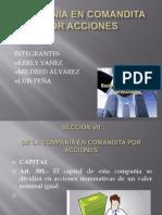 COMPAÑIA EN COMANDITA POR ACCIONES (1)