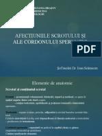 patologie testiculara.pptx