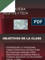 1. Protozoos Intestinales_2c Entamoeba Histolityca
