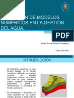 Aplicación de modelos numéricos en la gestión del