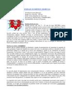Moruga-Guide.pdf