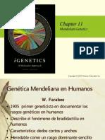 CAP 11cont -cap  12 cap  13 (2013)--GENETICA.pdf