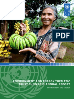 Environment and Energy Thematic Trust Fund Annual Report-2012