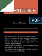 Hepatitis b (1)