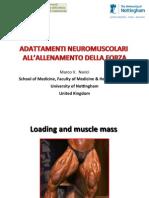 Presentazione Narici.pdf