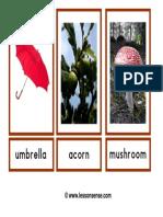 photoflashcardsautumn (1).pdf