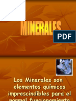 08 Minerales