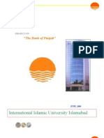 """Project on """"The Bank of Punjab"""" 2009"""