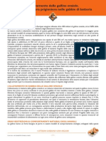 galline-ovaiole-dossier-lav.pdf