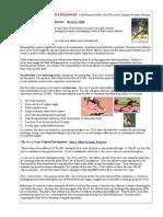 3 Laws of Speed Development.pdf