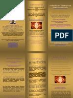 Metatron Resonance Brochure Website