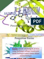 Pert 1 Enzim & Koenzim (Fkip)