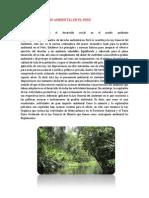 Costitucionalismo Ambiental en El Peru