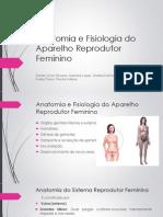Anatomia e Fisiologia Do STF