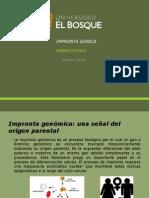 Embrio Impronta genica