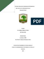 Makalah Pribadi - Struktur Organisasi dan Program Puskesmas Kecamatan Lubuk Kilangan.docx
