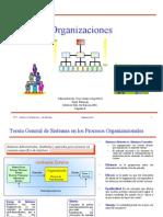 Organizacion y Gerencia