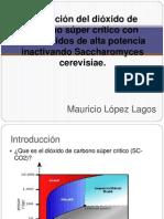 Paper Micro
