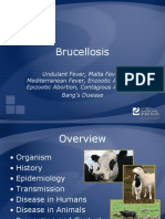 Brucellosis Ppt1234