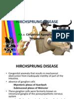 36452841 Hirchsprung Disease