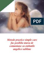 Ingerii.pdf