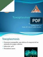 Toxoplasmosis.pptx