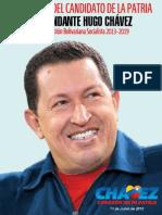 Programa Patria 2013 20192