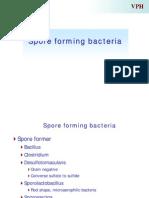 Spore Forming Bacteria