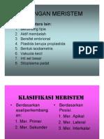 JARINGAN MERISTEM.pdf