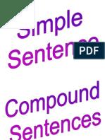 sentence structure.docx