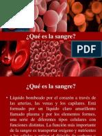 Clase 3 Origen de La Sangre[1]