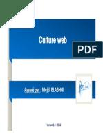 Presentation Culture Web