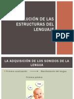 Evolución de las estructuras del lenguaje.pptx