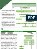 Programa de Ciclos Transaccionales.ppt