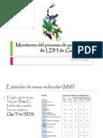 Monitoreo del proceso de purificación de LDH 2014-1