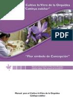 Manual or Qu Ideas 2011